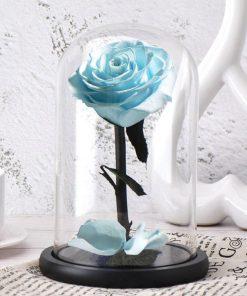 Rose Éternelle Sous Cloche Belle Et La Bête